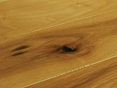 American Hickory Natural