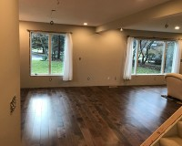 Moderno Seal Cove Living Room Installation St. Paul MN
