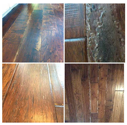 Steam cleaner damage that will occur when use a steam cleaner on wood floors. A photo of Damaged Hallmark Floors from steam cleaning