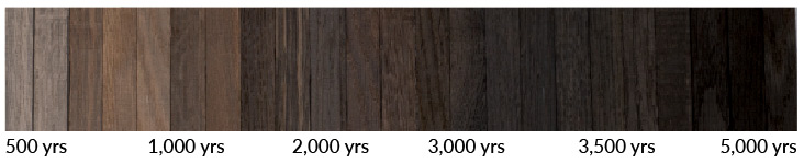 True Hardwood Story | Age and exposure to the specific conditions in which it has been preserved determine the tone and intensity of color. Bog wood transformation over years inspired the creation of TRUE hardwood floors.